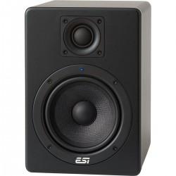"ESI aktiv 05 Monitor Studio 5"" Activo"